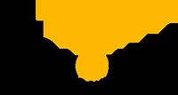 Visionja Logo